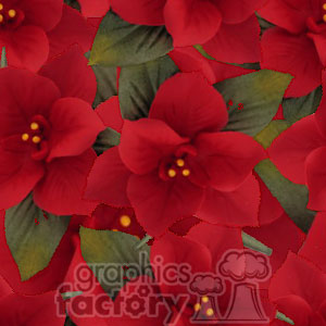 tiled poinsettia background clipart. Commercial use image # 372660