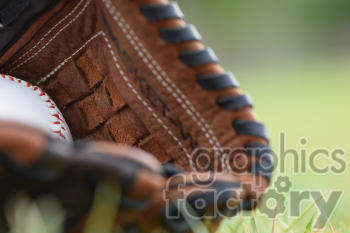 baseball glove in grass left photo. Royalty-free photo # 391048