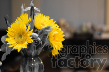 yellow sunflower clipart. Royalty-free image # 391073