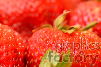 strawberries photo. Royalty-free photo # 391248