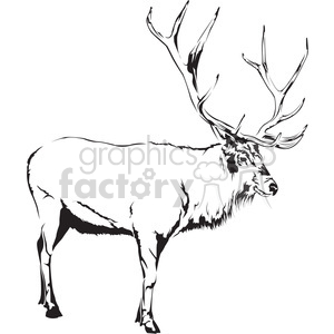 black and white Elk side profile clipart. Commercial use image # 394985
