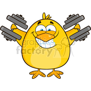 8611 Royalty Free RF Clipart Illustration Smiling Yellow Chick Cartoon Character Training With Dumbbells Vector Illustration Isolated On White clipart. Royalty-free image # 396477
