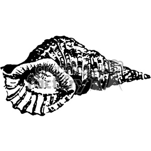 vintage retro old black+white shell seashell tattoo