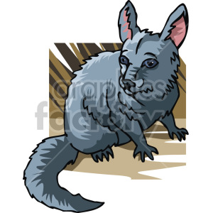 chinchilla clipart. Royalty-free image # 129350