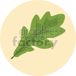 oak leaf on yellow circle background