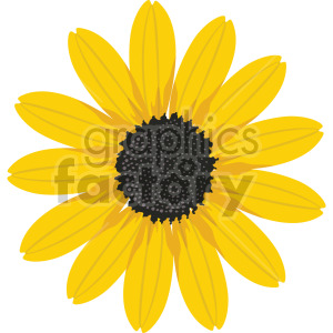 Black eyed Susan flower clipart. Commercial use image # 408064