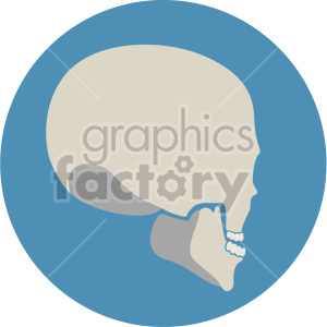 skull three quarter back view on circle background clipart. Royalty-free image # 408382