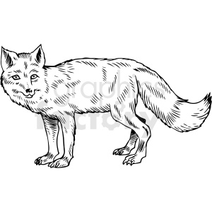 black and white fox vector illustration clipart. Commercial use image # 412596