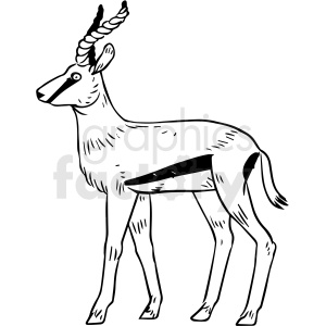 black and white springbok vector clipart clipart. Commercial use image # 412922