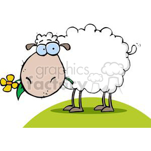 A Funky Sheep With Flower In Mouth On A grassy Knoll clipart. Commercial use image # 379241
