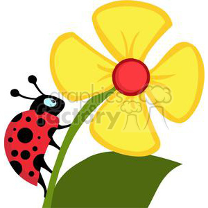 cartoon funny comical vector bug bugs lady ladybug ladybugs crawl flower yellow