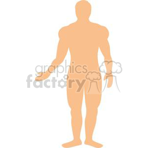 2569-Royalty-Free-Male-Human-Body clipart. Commercial use image # 379975
