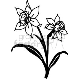 orchids clipart. Commercial use image # 380152