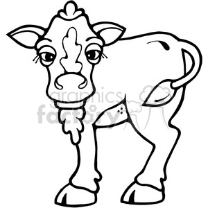 cartoon calf cow baby hefer