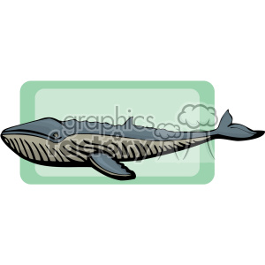 fish animals whale whales Clip Art Animals Fish blue largest