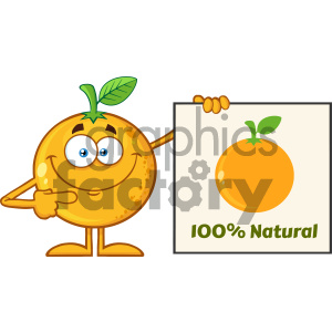Royalty Free RF Clipart Illustration Smiling Orange Fruit Cartoon Mascot Character Pointing To A 100 Percent Natural Sign Vector Illustration Isolated On White Background clipart. Royalty-free image # 404364
