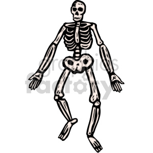 cartoon skeleton clipart. Royalty-free image # 149509