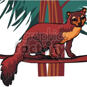 lemur clipart. Royalty-free image # 129290
