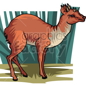 deer clipart. Royalty-free image # 129328