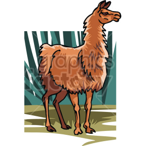 llama clipart. Royalty-free image # 129330