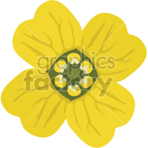asian flower aurinia saxatilis clipart. Royalty-free image # 408030