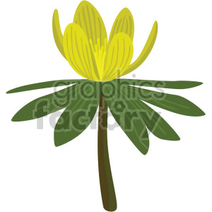 aconite flower clipart. Commercial use image # 408040