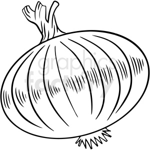 black and white onion vector clipart clipart. Royalty-free image # 411742