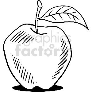 black and white apple vector clipart clipart. Royalty-free image # 413301