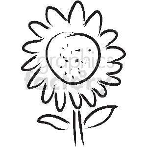 black and white tattoo sunflower vector clipart