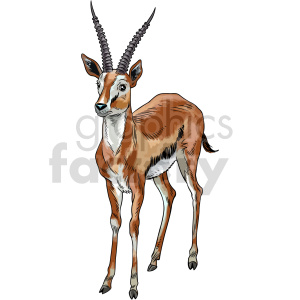 gazelle vector clipart clipart. Commercial use image # 416177