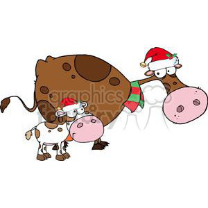 3437-Spotted-Calf-By-A-Mom-Dairy-Cow-With-Santas-Hats clipart. Royalty-free image # 380826
