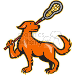 dog lacrosse stick