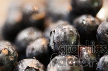 pile of blueberries clipart. Royalty-free image # 391221