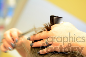 hair stylist cutting hair photo. Royalty-free photo # 391291
