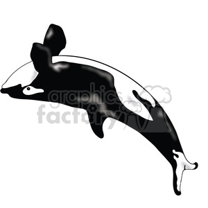 Killer Whale 04 clipart. Royalty-free image # 391552
