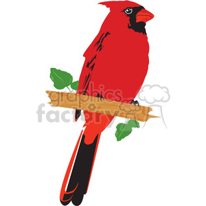 cardinal red bird clipart. Royalty-free image # 394999
