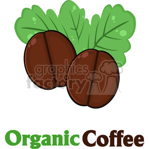 illustration organic roasted coffee beans cartoon vector illustration with text isolated on white clipart. Commercial use image # 399486