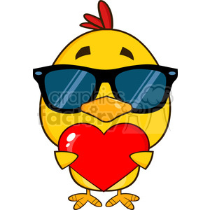 cute yellow chick with sunglasses cartoon character holding a valentine love heart vector illustration isolated on white clipart. Commercial use image # 400060