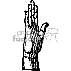 William Cheselden vector right hand side anatomy art clipart. Royalty-free image # 403126