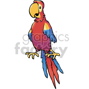 pirate parrot clipart. Royalty-free image # 407799