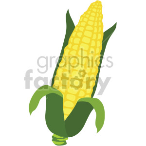 corn on the cob clipart. Royalty-free image # 407971