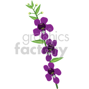 Angelonia flower clipart. Royalty-free image # 408059