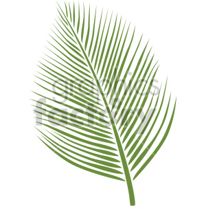 palm leaf clipart. Commercial use image # 408069