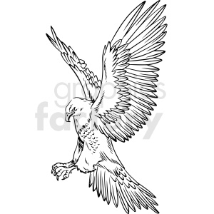 black and white eagle hunting vector clipart clipart. Commercial use image # 412716