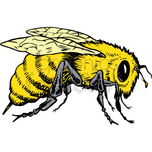 realistic bee vector clipart clipart. Royalty-free image # 413208