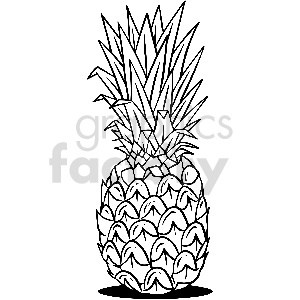 black and white pineapple vector clipart clipart. Commercial use image # 413306