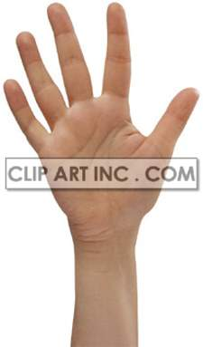 hand sign hello number five finger   3i0007lowres photos people