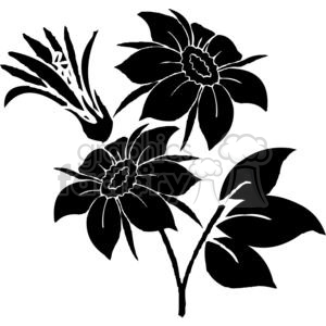 56-flowers-bw animation. Royalty-free animation # 380086
