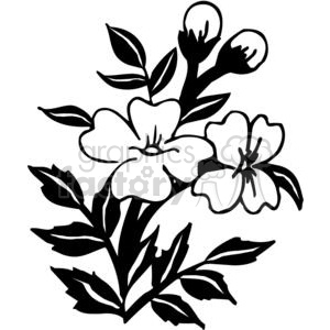 Two Black and white flowers clipart. Commercial use image # 380106