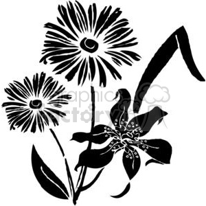 64-flowers-bw clipart. Commercial use image # 380121